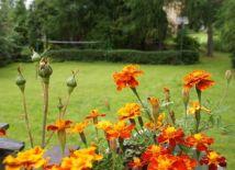 Ogród w Góralówce